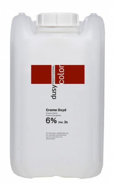 Dusy Wasserstoff 6% - 20 Vol.