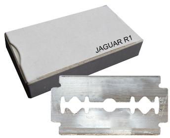 Jaguar Klingen R1