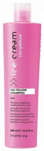 Inebrya Ice No-Yellow Shampoo
