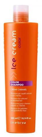 Inebrya Ice Color Shampoo